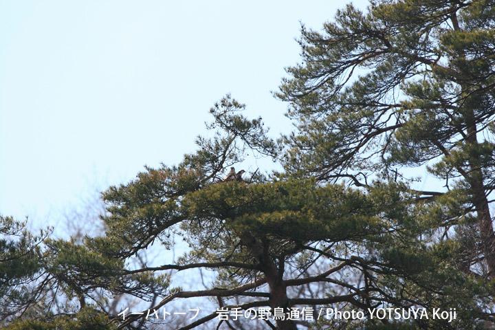 2013blog01_2