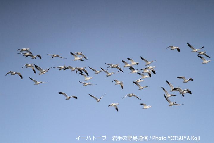 2045blog05_2