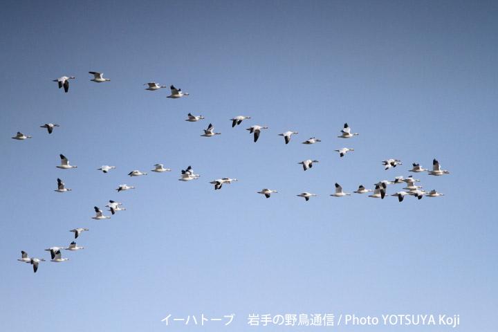 2045blog09_2