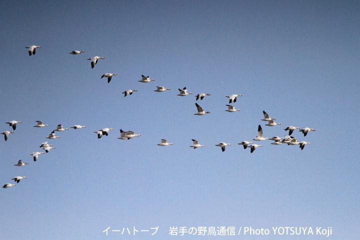 2045blog10_2