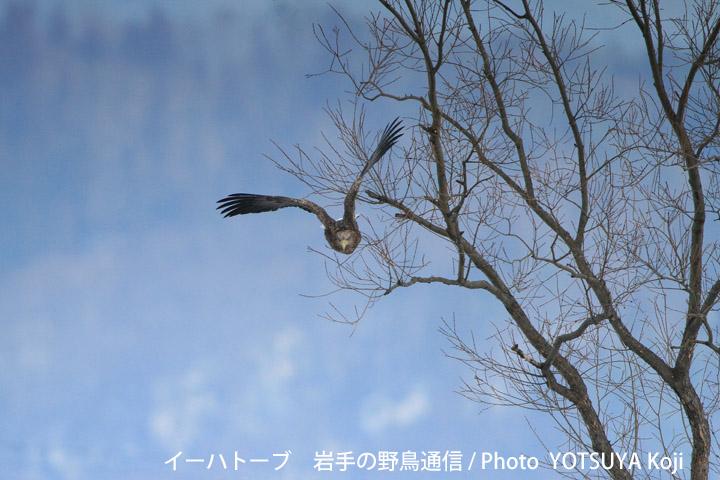 2049blog08d_2