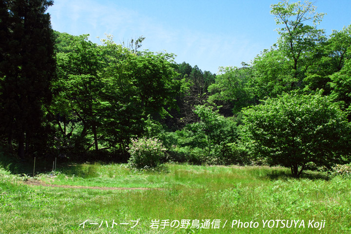 3111blog01_2