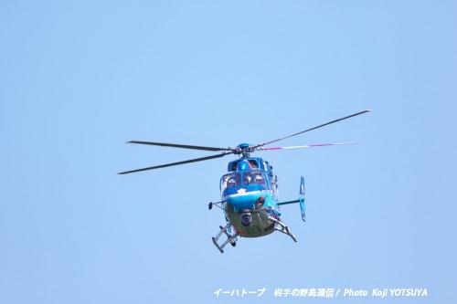 B6013blog59